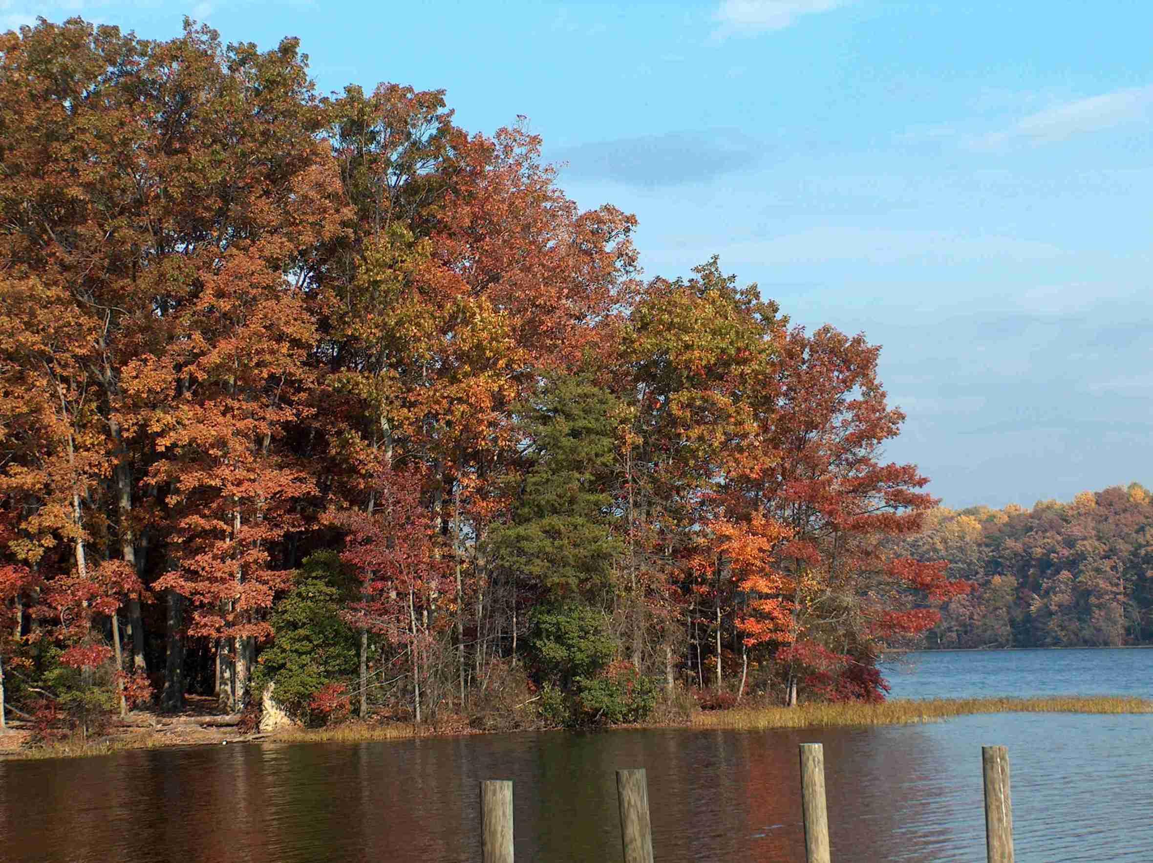 burke-lake-pic.jpg